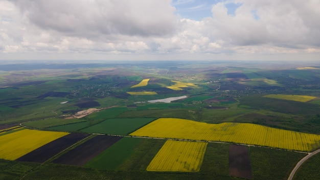 Vista aérea da agricultura com campos verdes e campos amarelos