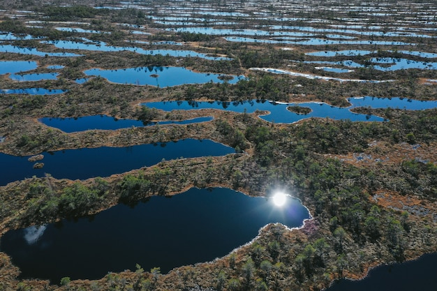 Vista aérea da área do lago com vegetação