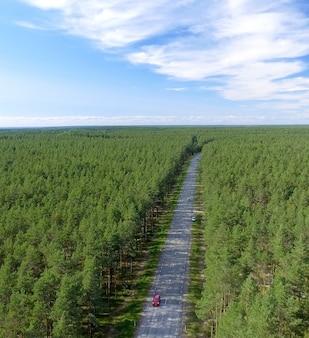 Vista aérea da bela estrada em toda a floresta.