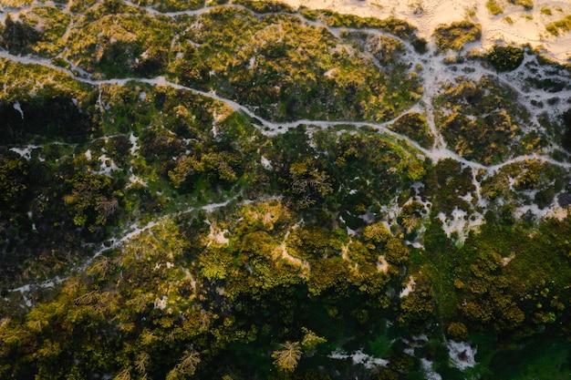 Vista aérea da bela natureza perto da praia em um dia ensolarado