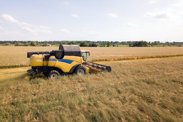 Vista aérea da colheitadeira colhendo grande campo de trigo maduro. agricultura do ponto de vista do zangão.