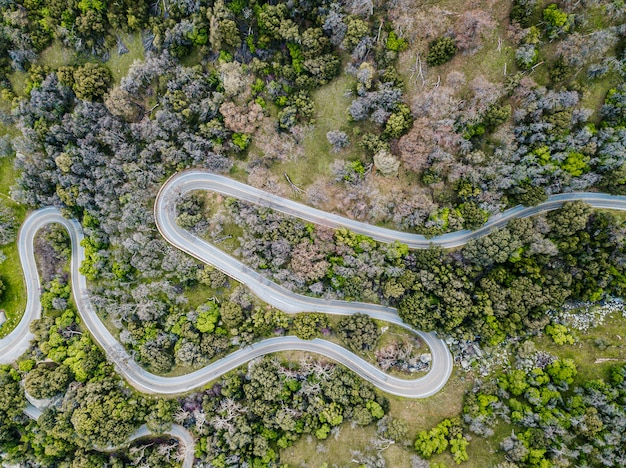 Vista aérea da estrada curvng na floresta