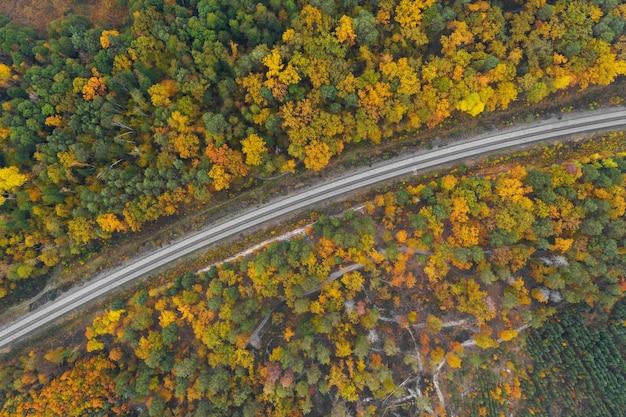 Vista aérea da estrada de ferro no meio de uma floresta de outono,