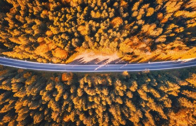 Vista aérea da estrada de montanha na bela floresta ao pôr do sol no outono. vista superior do drone da estrada de asfalto na floresta. paisagem colorida com estrada, árvores com folhas de laranja no outono. viagem e natureza