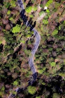 Vista aérea da estrada no meio de árvores verdes