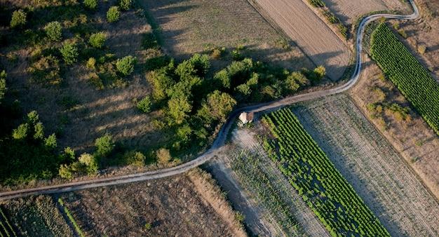 Vista aérea da estrada vazia e campos