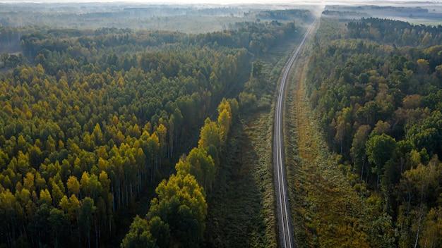 Vista aérea da ferrovia na floresta na manhã nublada de outono, vista superior da ferrovia rural no outono