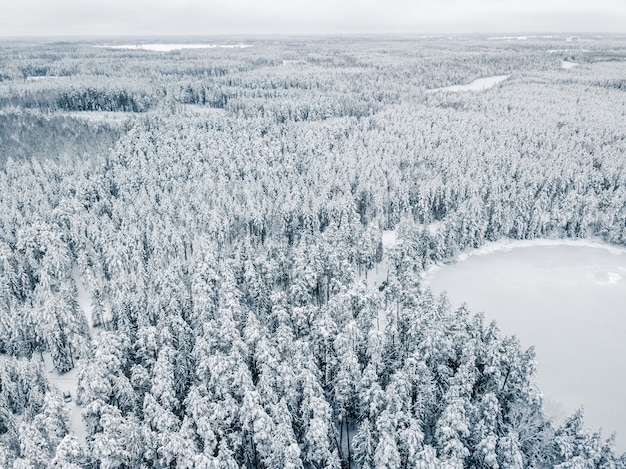 Vista aérea da floresta de inverno coberta de neve. fotografia de drones