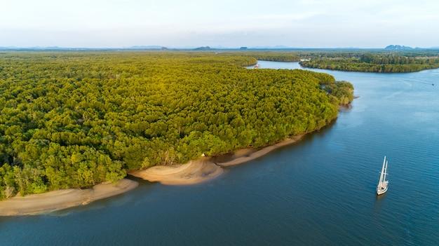 Vista aérea da floresta de mangue e rio flui para o mar com veleiro.