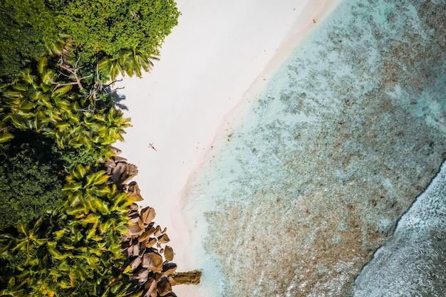 Vista aérea da garota deitada em uma praia tropical com palmeiras e as ondas do mar. seychelles.