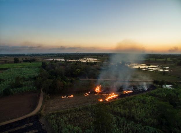 Vista aérea da grama seca de burning do fazendeiro do zangão no tempo do por do sol, paisagem do céu.