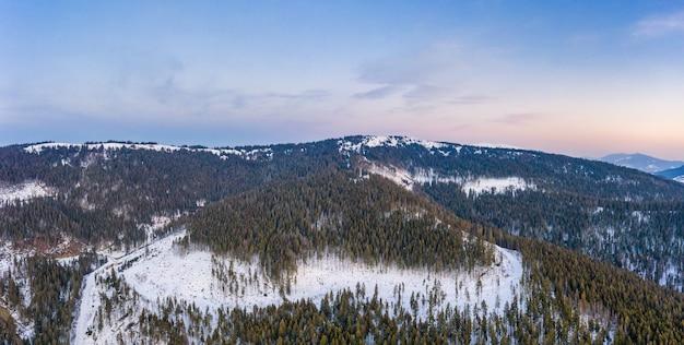 Vista aérea da hipnotizante paisagem pitoresca de pinheiros altos e delgados crescendo em colinas nevadas em um inverno ensolarado e um dia claro contra um céu azul.