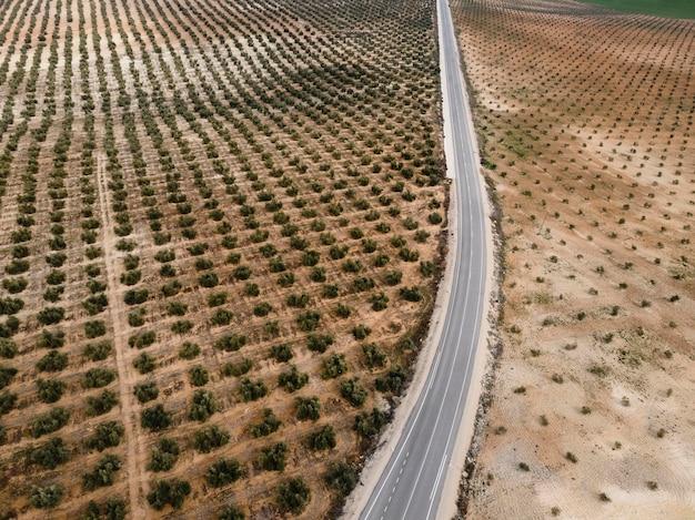 Vista aérea da paisagem da natureza