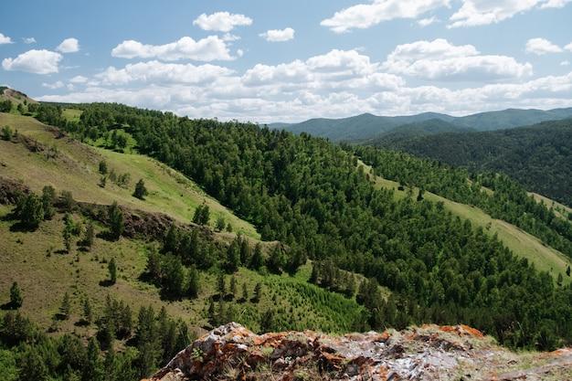 Vista aérea da paisagem da taiga de verão.