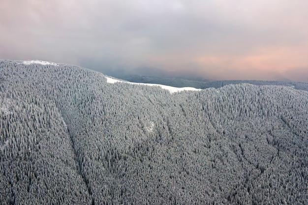Vista aérea da paisagem de inverno com colinas cobertas por uma floresta de pinheiros depois de uma forte nevasca na noite fria e tranquila.