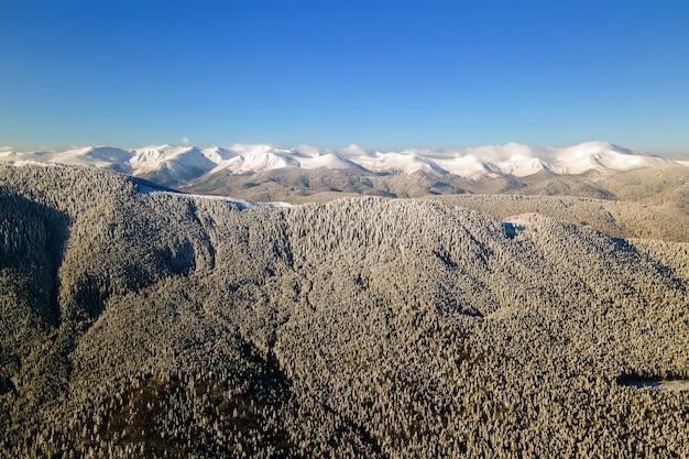 Vista aérea da paisagem de inverno com colinas cobertas por uma floresta de pinheiros verdes após forte nevasca em um dia frio e brilhante.