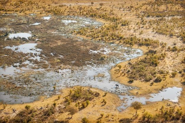 Vista aérea da savana com elefantes