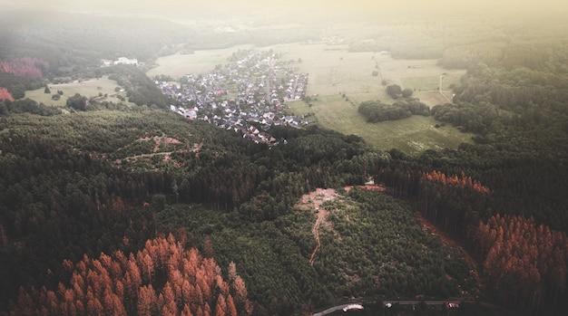 Vista aérea das casas rurais em meio à densa floresta