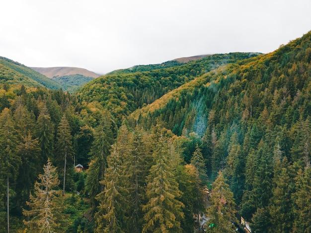 Vista aérea das montanhas dos cárpatos no outono copie o espaço