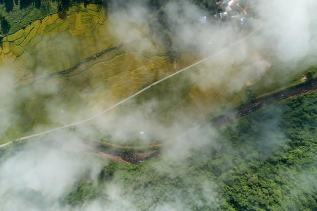 Vista aérea das ondas de nevoeiro fluindo na floresta tropical de montanha