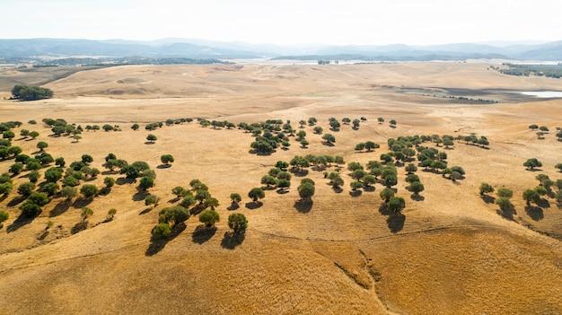 Vista aérea de belas colinas