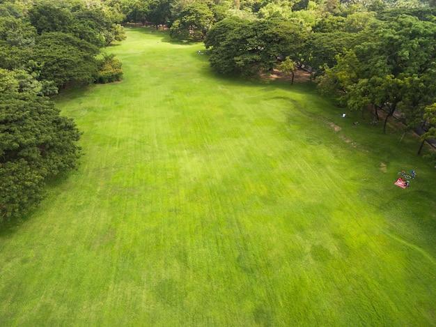 Vista aérea, de, bonito, parque