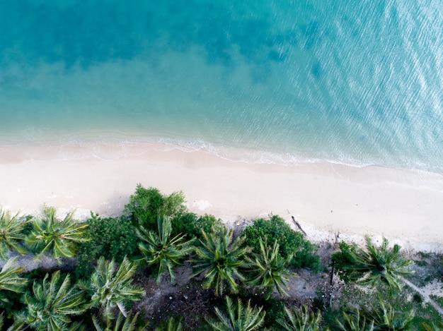 Vista aérea, de, bonito, praia areia branca, com, turquesa, mar, água, e, coqueiros