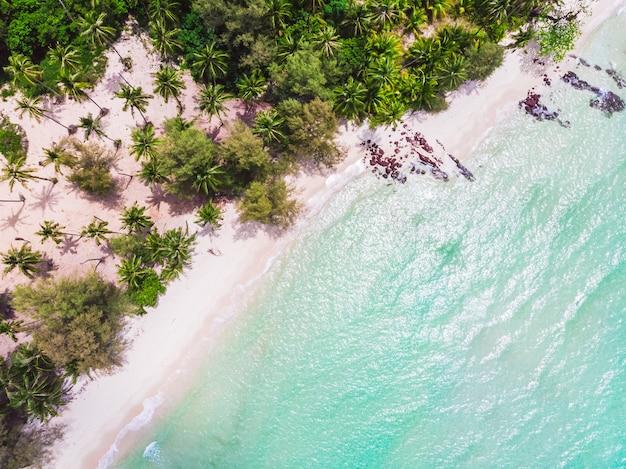 Vista aérea, de, bonito, praia, e, mar, com, coqueiro, árvore