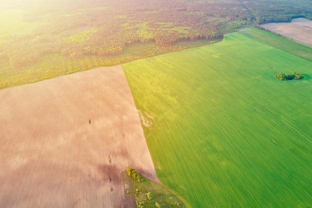 Vista aérea de campos agrícolas e verdes no campo