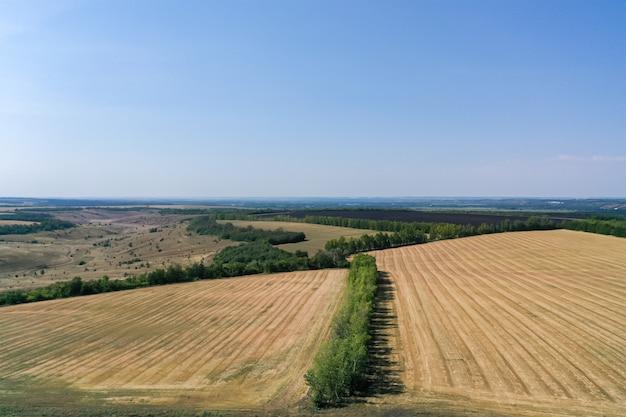 Vista aérea de campos agrícolas em dia ensolarado