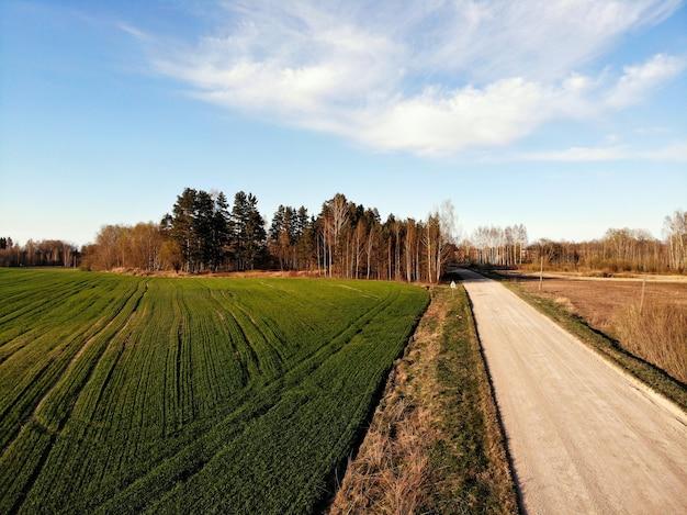 Vista aérea de campos agrícolas verdes e estradas rurais na primavera com vegetação fresca