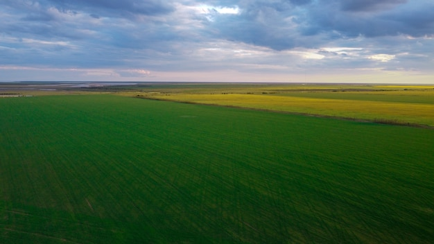 Vista aérea de campos agrícolas, vista sobre os campos agrícolas verdes e amarelos