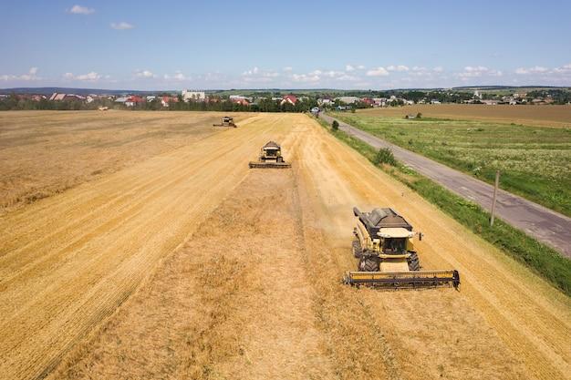 Vista aérea de colheitadeiras, colheita de grande campo de trigo maduro amarelo.