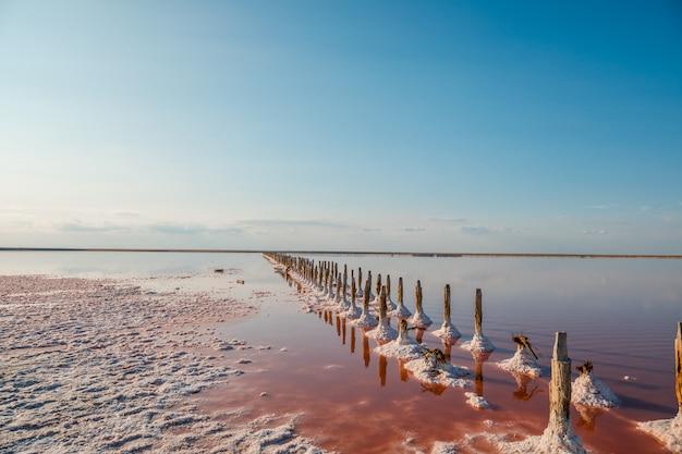 Vista aérea, de, cor-de-rosa, lago, e, praia arenosa