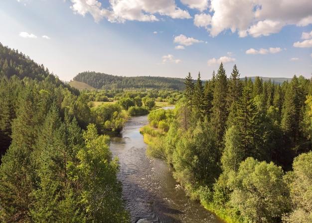 Vista aérea de riachos, árvores coníferas e colinas
