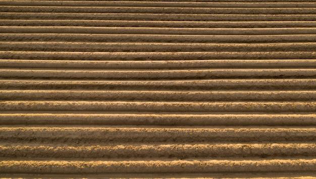 Vista aérea de solo de alta qualidade no campo. pronto para o cultivo. campo com batatas, raízes.
