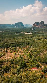 Vista aérea de tirar o fôlego de florestas tropicais em um verde vibrante