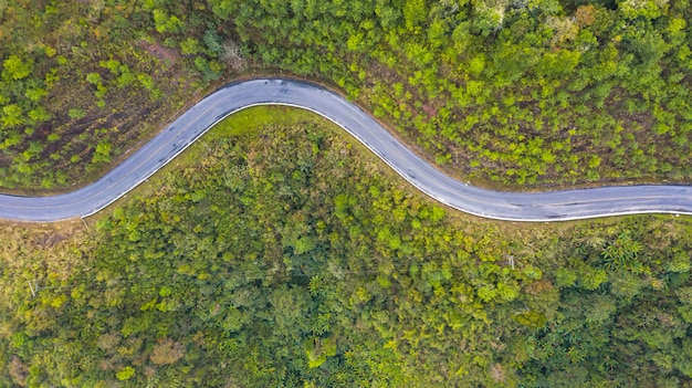 Vista aérea de topo de uma estrada na floresta