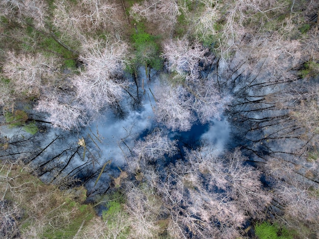 Vista aérea de um lago na floresta no reflexo do céu no início da primavera na superfície da água