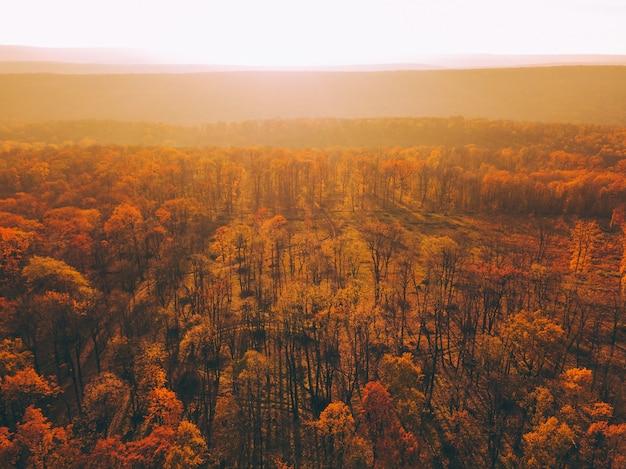 Vista aérea de um pôr do sol panorâmico nas colinas da floresta, com cores dramáticas em tons