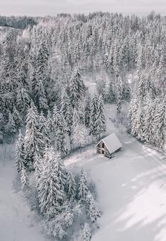 Vista aérea de uma bela paisagem de inverno com pinheiros e uma cabana coberta de neve