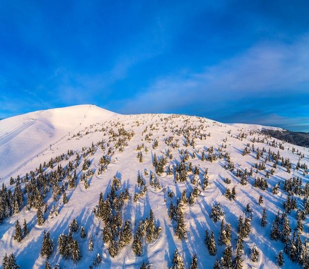 Vista aérea de uma encosta de esqui com pinheiros