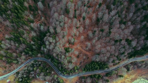 Vista aérea de uma estrada sinuosa cercada por verdes e árvores