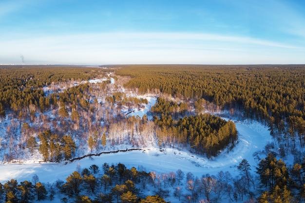Vista aérea de uma floresta de inverno em forma de coração
