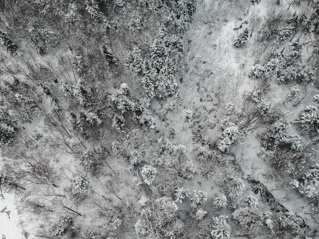 Vista aérea de uma paisagem de neve
