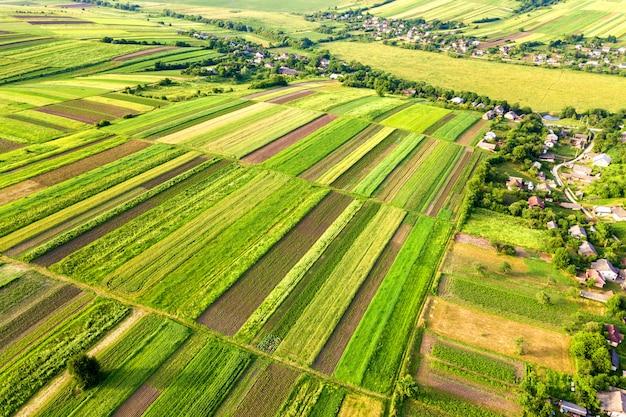 Vista aérea de uma pequena vila ganha muitas casas e campos agrícolas verdes na primavera com vegetação fresca após a semeadura em um dia quente e ensolarado.