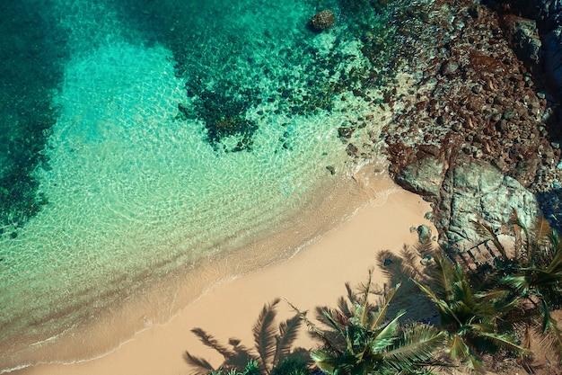 Vista aérea de uma praia tropical em uma ilha com palmeiras