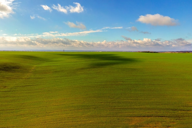 Vista aérea do campo agrícola verde brilhante no início da primavera.