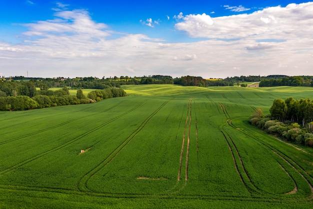 Vista aérea do campo com campos agrícolas e florestas verdes, letônia