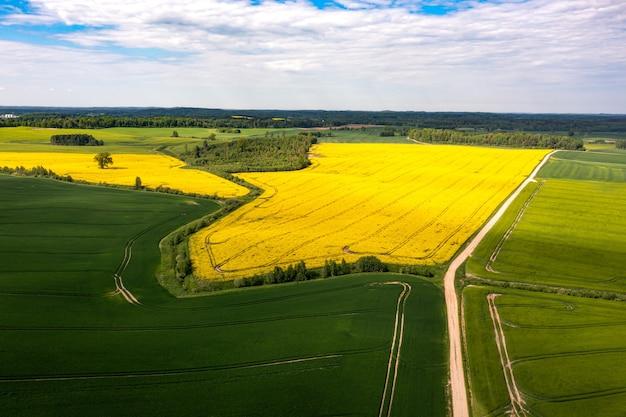 Vista aérea do campo com estrada, campos agrícolas verdes e amarelos, florestas, letônia